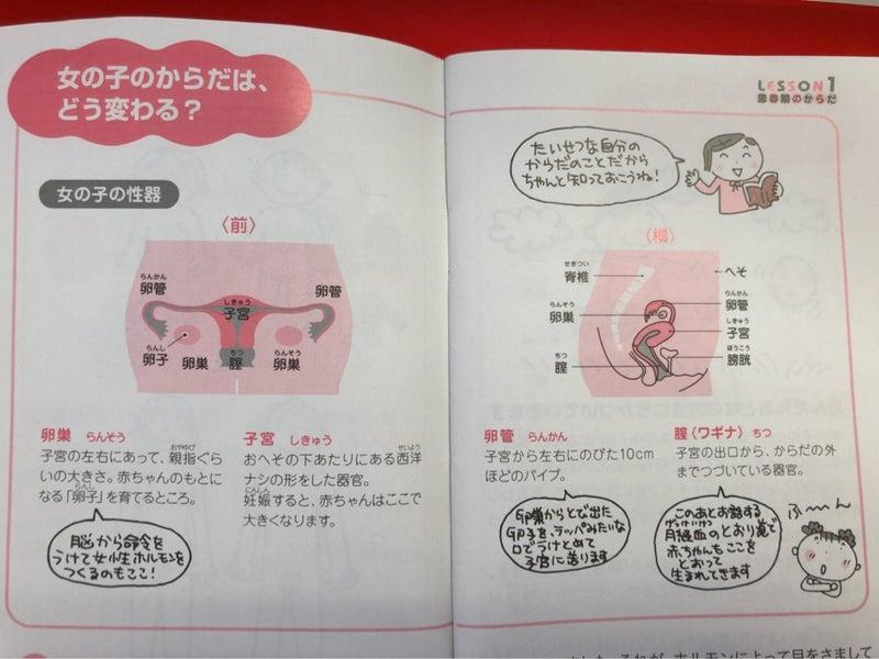 今治タオル製♡温布®︎(おんぷ)布ナプキンを使って子宮メソッドを学ぶ方法女の子の性器のしくみ