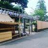 行徳  胡録神社のお祭り♡の巻の画像