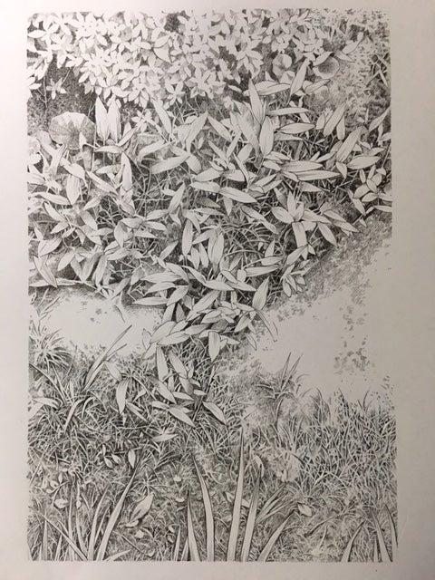 アナログペン画による細密画の描...