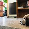 床でヒンヤリ〜熱中症対策