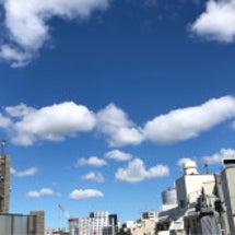 8月の東京セッション…