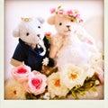 #結婚相談所サイトの画像