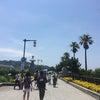 江の島旅行の画像