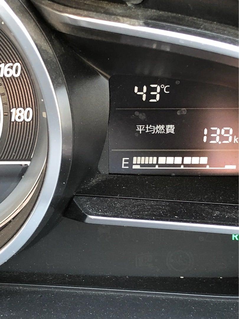 ついに43度越え⁉️