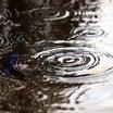 『夏疾風』After the Rain の感想