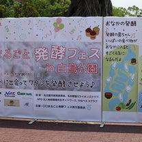 夏の堀川浄化大作戦!& 〇〇まるごと発酵フェスの記事に添付されている画像