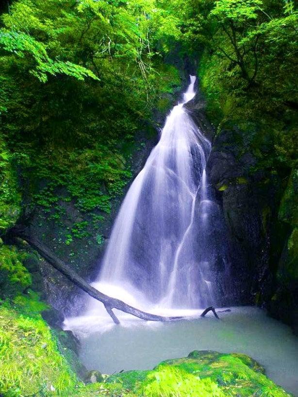 05福山不動滝・鳥取県三朝町 | うり坊の滝見見聞録