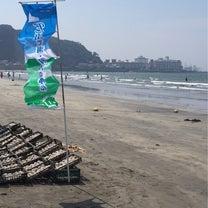 海の日 材木座海岸で水質浄化のボランティア活動に参加しました!の記事に添付されている画像