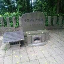 飯盛山から鶴ヶ城