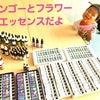 【レポ】宮古島マンゴーの会の画像