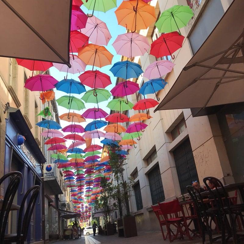 美丹田 美構造 南フランス散歩 カルカッソンヌ 傘