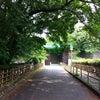 Nagoya Castle①☆400年の歴史ある名古屋城☆の画像