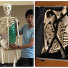 全身骨格模型 解体の記事より