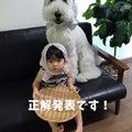 #大型犬と子どもの画像