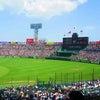 野球場のメロディーの画像