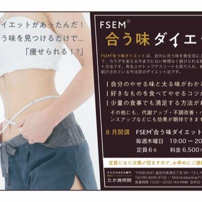 FSEM®合う味ダイエットコースの記事に添付されている画像