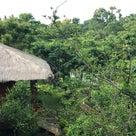 スリランカでアーユルヴェーダ〜その4の記事より