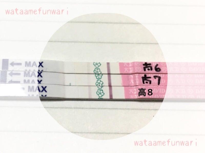高温期8日目 排卵検査薬