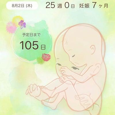妊婦健診&中期胎児スクリーニングの記事に添付されている画像