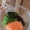 副菜 #1>>ほうれん草とにんじんの胡麻和え<<の画像