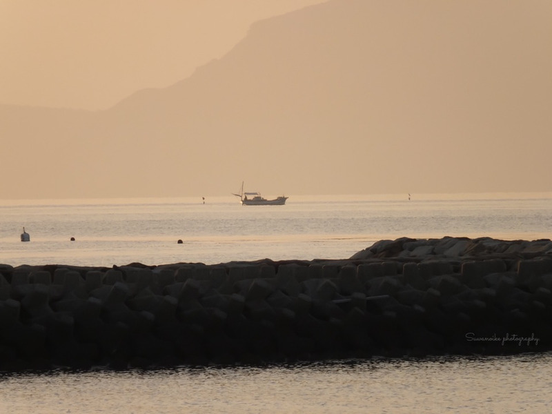 Early morning | Suwanoike Phot...