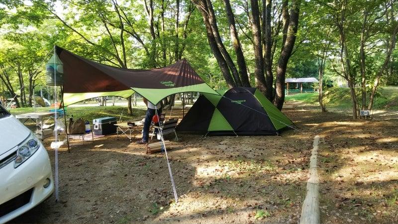 キャンプ まなか の 森