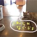 #恋人岬の画像