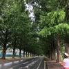 三方五湖(福井県)→彦根城(滋賀県)の画像