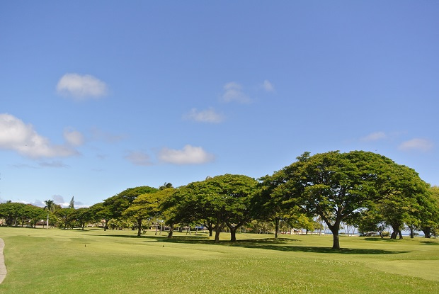 Waialae Country ClubNo.6