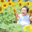 福山市 公園フォト 撮影レポート ひまわり 女の子