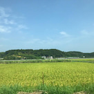 行方市文化会館・鹿島神宮・香取神宮にて「音のくすり」をお届けして参りましたの記事より