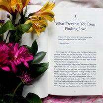 愛されてもいいし、愛されなくてもいい、っていうのが「どうせ愛されているし」の記事に添付されている画像