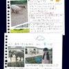 熊本の行ってみてほしい所!~熊本動植物園~の画像