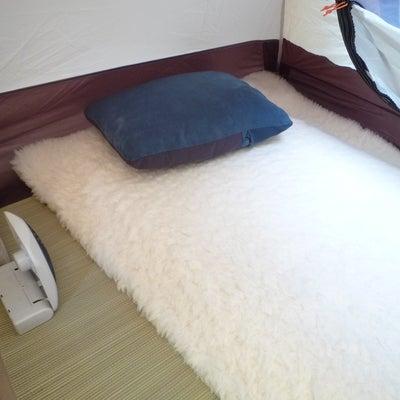 真夏のキャンプで快適に寝る方法の記事に添付されている画像