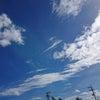 台風20号~自然の力の画像