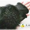 秋冬コレクション♡ファータイプのデコレーションレッスンを検討中の画像