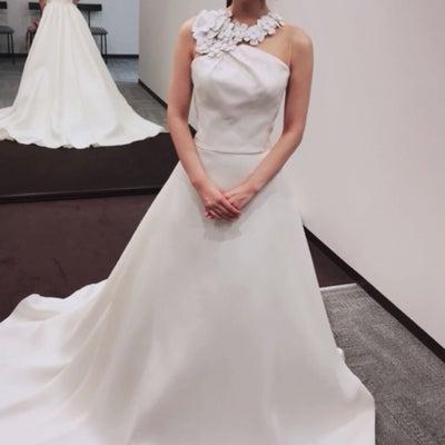 ドレス探しの旅8_斬新ドレスの記事に添付されている画像