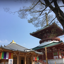 仕事運に効く神社仏閣の記事に添付されている画像