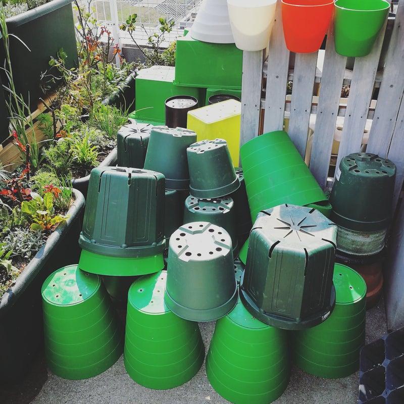自作プランターに植物を植えましょう。
