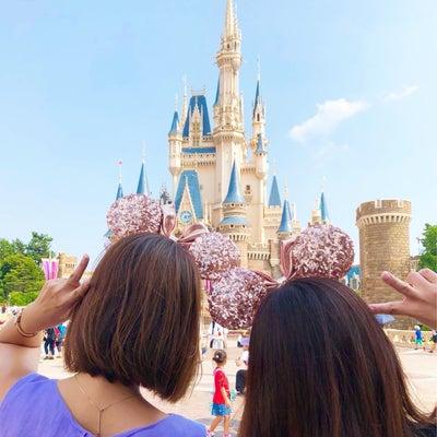 Disney Landの記事に添付されている画像