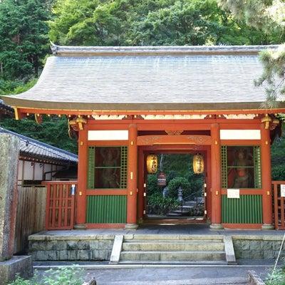 愛宕念仏寺(おたぎねんぶつじ)の記事に添付されている画像