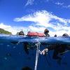 青の洞窟シュノーケル♪青の洞窟に行ける確率No1のテイクダイブ♪体験ダイビングもお任せです!!の画像