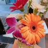 花言葉の画像