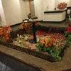パルの秋の画像