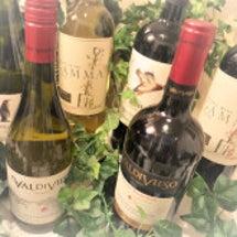 チリワイン【ワインワ…