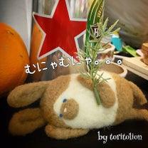 横浜 羊毛フェルト教室◆お客様からの素敵なご連絡♪の記事に添付されている画像