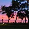 【2歳&3歳の子連れボルネオ島・コタキナバル旅行】4-5日目*帰国編⑅◡̈*.。.:✩の画像