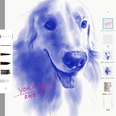 デジタルデッサンの描き方の記事に添付されている画像