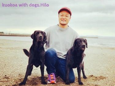kuokoa with dogs hilo