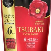 価格変更(TSUBAKI)の記事に添付されている画像